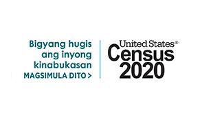2020 年国勢調査